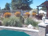 retaining wall and planting in pool area